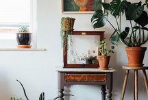 planten decoratie