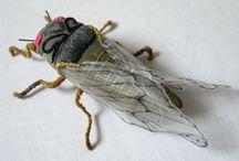 текстильный жук