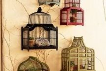 Bird cages and other great loves / by Carmel O'L