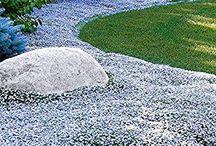 Garten Bodenecker