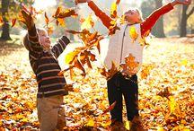 i love autumn / by Catina jane Gray