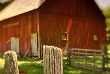 Farm / by Lisa Fischer Jacobsmeyer