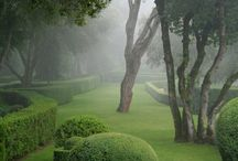 Nature so beautifull............