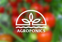 Сельское хозяйство + технологии