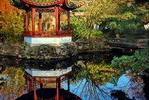 LiveIn Chinatown - Vancouver