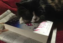 Pets with Rebecca Chance books! / In which readers post photos of their beloved animals with their beloved reading material...