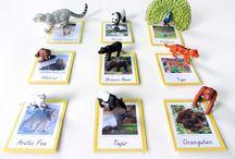 Montessori animals