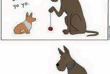Hahah