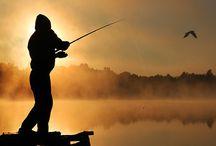 My Pins - Fishing / Pins - Fishing