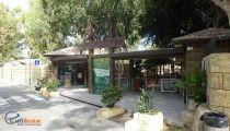 Зоопарк в Лимассоле на Кипре / В городском парке Лимассола устроен и небольшой зоопарк, где можно увидеть, например кипрского муфлона, которого почти невозможно встретить в дикой природе, так как он очень пуглив. Зоопарк в Лимассоле очень чистый, ухоженный, нет характерных неприятных запахов.