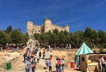 Campeonato Mundial Combate Medieval / Campeonato Mundial de Combate Medieval celebrado del 1-4 de Mayo de 2014 en Belmonte - Cuenca - España