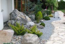 каменистые сады - рокарии