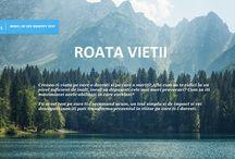Roata Vietii - TEST DE PERSONALITATE