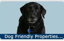 Dog Friendly Vacation Rental Homes
