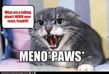 Meno*paws* / Hell