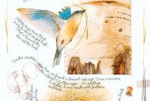 Птицы в акварелях М.Бастин / Творчество М.Бастин