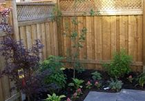 Backyard ideas / by Bethany Terry