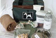 Reisen mit Hund / Reisen mit Hund - Ideen & mehr