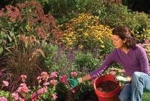 Gardening Tips, Tricks & Ideas