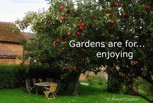 Garden Design Ideas / Ideas for different types of garden design