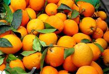 Orange / Orange / by Mukesh Chakarwarti
