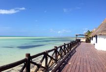 Isla Holbox / by Visit Cancun