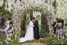 cute wedding must haves / by Joelle Mery