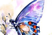 lila pillango