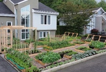 Beautiful gardens and yards / by Linda Peterson