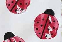 Brouci,motýli,berušky