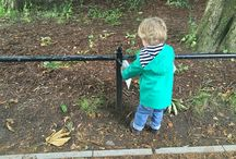Toddler adventures / Toddlers exploring nature and being out and about