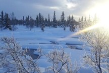 Snowscapes from Valdres