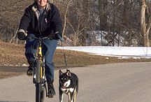 Dogs and bikes / Ride with your dog!