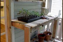 garden design and ideas