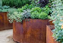 Desired veggie beds