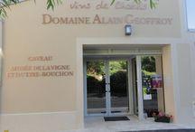Domaine Alain Geoffroy / Visite du vignoble et des chais au Domaine Alain Geoffroy à Chablis Bourgogne Réservez avec winetourbooking.com