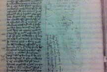 Manuscripts / Series of funny medieval illuminations in manuscripts