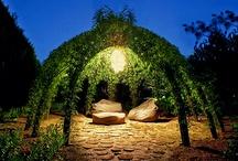 * In the garden *