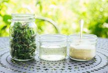 Cucina con erbe