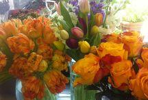 Arrangements / Table and Flower Arrangements