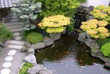 ideas para mi jardin