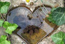 Garden bliss & backyard ideas