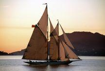 Smooth Sailing / by Teresa Turner