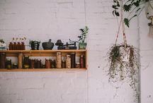 Plant as interior item
