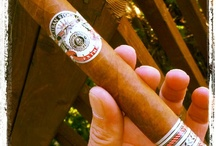 Cigars, cigars, cigars! / Cigars / by Cigar Dan