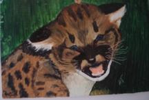 My oil paintings  /
