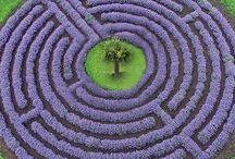 Labyrinths, spirals and mandala gardens