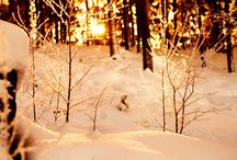 Winter~
