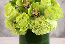 Veldkamp's Flowers Exclusives