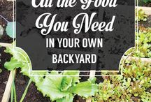 Gardening feasts to eat